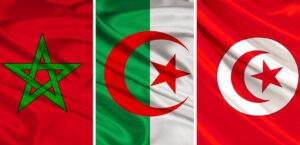 [MEMOIRE] Journée nationale à la mémoire des victimes de la guerre d'Algérie et des combats en Tunisie et au Maroc