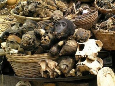 [CRIME] Encore un drame de la superstition au Nigeria