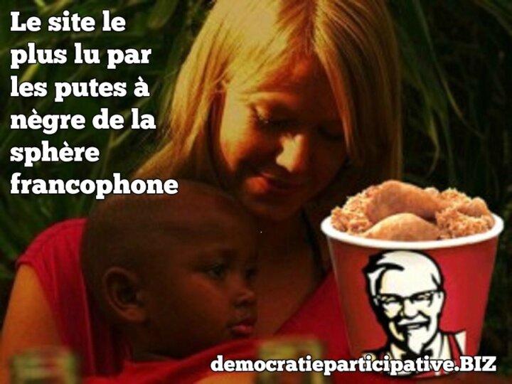 [SCANDALE] «democratieparticipative.biz» Un site francophone ouvertement raciste et qui l'assume