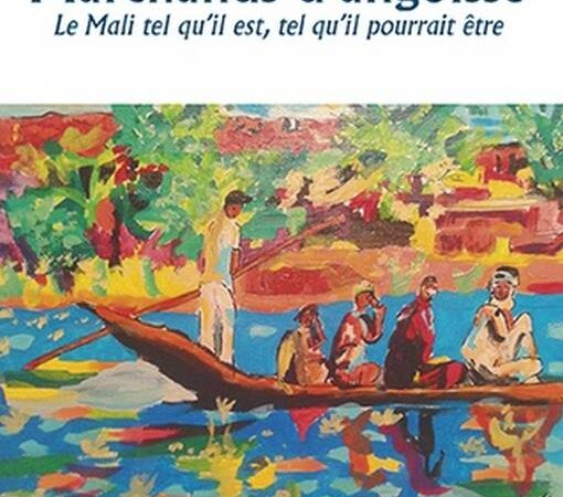 [LITTERATURE] «Marchands d'angoisse – Le Mali tel qu'il est, tel qu'il devrait être» un livre du Lyonnais Mohamed Amara