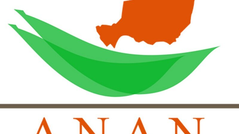 [ASSOCIATION] ANAN (Association des Nigériens et Amis du Niger en Rhône Alpes et Auvergne)